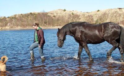 Focus en leiderschap. Mijn grootste les van de paarden.