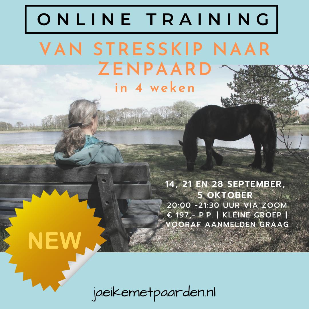 Coach met paarden - online training